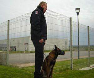 Formation gardiennage et sécurité