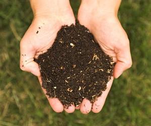 Illustration de l'article Enfin des composts à vendre sur le site de Salvaza (Carcassonne)