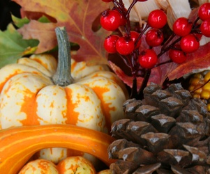 Illustration de l'article Quels sont les fruits et légumes de saison ?