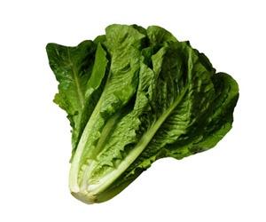 Illustration de l'article Carrefour condamné pour une feuille de salade !