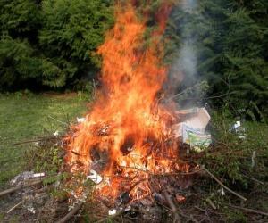 Illustration de l'article Brûler ses déchets verts est interdit !