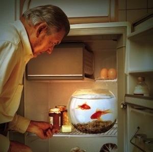 Illustration de l'article Alzheimer :  Le gestionnaire de cas, un intermédiaire privilégié