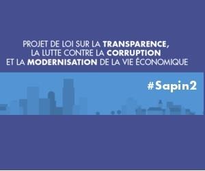 Illustration de l'article Le projet de loi #Sapin2 propose que les auto-entrepreneurs puissent dépasser les plafonds de revenu pendant 2 ans