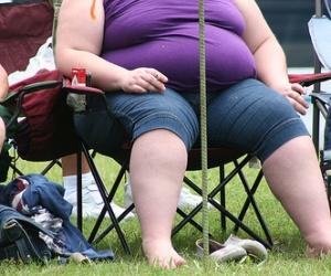 Illustration de l'article Des fauteuils d'avion pour les obèses