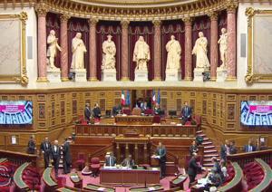 Illustration de l'article 28 propositions du Sénat pour la politique du Handicap dans la fonction publique