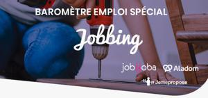 Illustration de l'article Baromètre 2019 du Jobbing