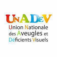 Illustration de l'article APPEL A PROJETS : UNADEV INVESTIT 2 MILLIONS D'EUROS POUR L INCLUSION DES PERSONNES DEFICIENTES VISUELLES