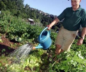 Illustration de l'article Le métier de jardinier