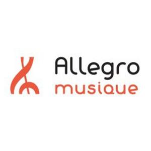 Cours de violon avec Allegro Somme