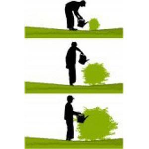 Entretien et création de jardin sur Cahors