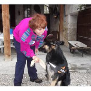 Garde et promenade de votre chien à votre domicile sur Lingolsheim