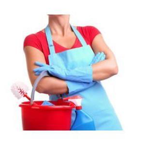 Propose heures de ménage sur Brignais et environs