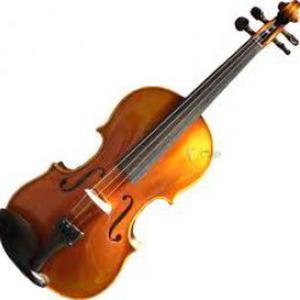 Cours de violon et de solfège diplômée du CNR sur Lyon 7e