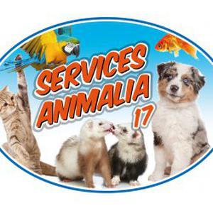 Transport animalier toutes distances sur La Rochelle