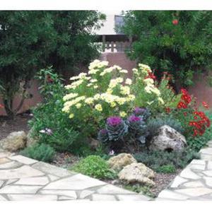Entretien de votre jardin