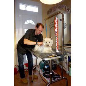 Toilettage chiens et chats à domicile 95