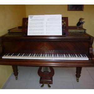 Cours particuliers de piano et accordéon pour enfants adultes 3ème age avec pratique de l'instrument dès le départ avec ou sans notions de solfège