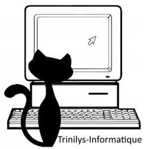 Trinilys-informatique