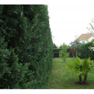 Jardinage Val d'Oise et départements limitrophes