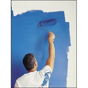 Igor, 32 ans cherche pose parquet, enduit, peinture