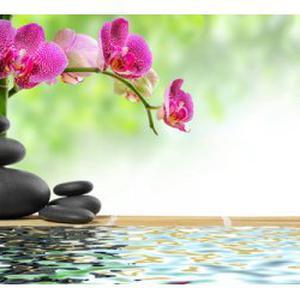 Un voyage par le massage