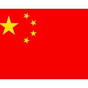 Cours de chinois pour initiés OU novices