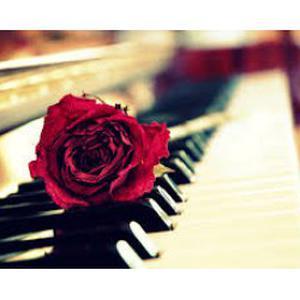 cours de piano débutant à saint-étienne