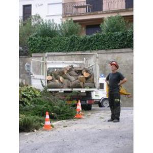 Particulier  Prestation de jardinier  (Canet-en-Roussillon / environs)