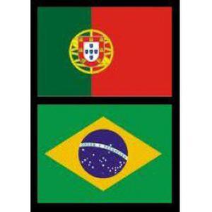 PORTUGAIS - Cours particuliers en présentiel ou par Skype