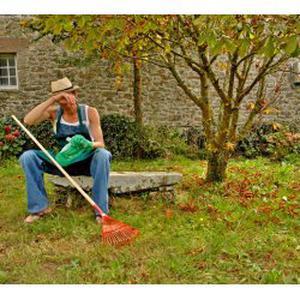Entretien et travaux de jardin
