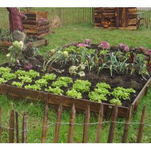 Travaux de jardinage divers