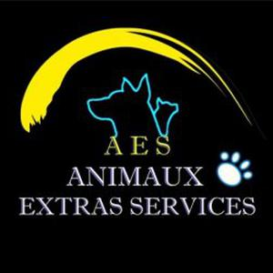 Promenades, gardes à domicile, transports animaliers sur Metz et sa région