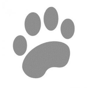 Promenades et visites à domicile de vos animaux de compagnie