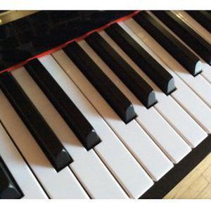 Pianiste donne cours de piano (75, 92 et 94)