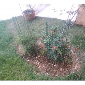 etudie toute propositions en jardinage