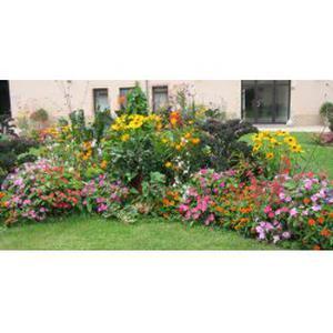 Entretien et création de jardins