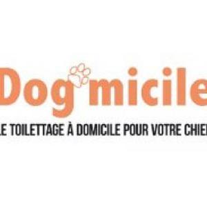 Toiletteuse  à domicile pour chiens à Eyguières et dans les Alpilles