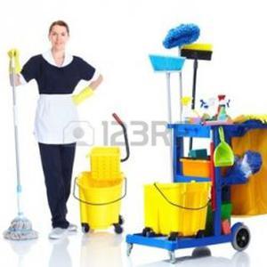Agente de propreté de locaux, femme de menage, aide a domicile