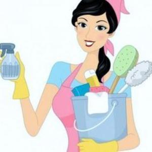 Femme de ménage à Limoges