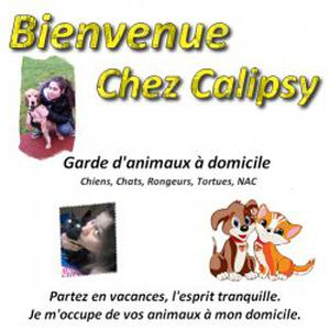 Garderie d'animaux chez Calipsy (67850)