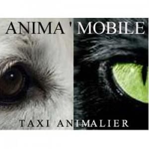 Anima'Mobile, Taxi animalier, garde à domicile, Promenade