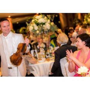 Professeur de violon donne cours particuliers