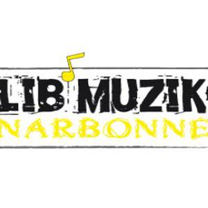 Lib'muzik Narbonne, école de musique, cours de guitare.