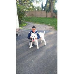 Anass, 16 ans promeneuse de chien