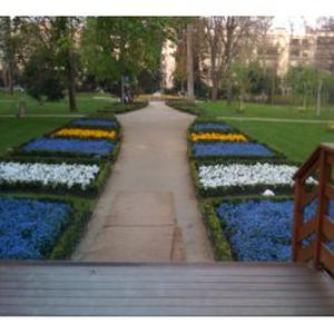 Paysagiste professionnelle, embellit vos jardin
