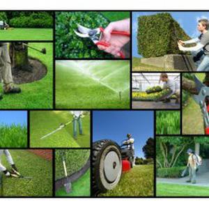 Propose jardinage