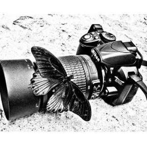 Manon, 21 ans photographe amateur aube 10