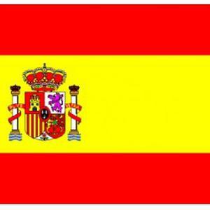 Professeur d'espagnol donne cours d'espagnol dans le 94