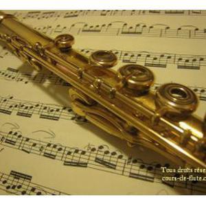 Photo de Cours de flûte