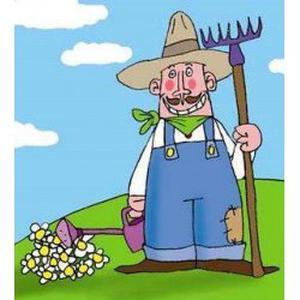 Jardinage bricolage